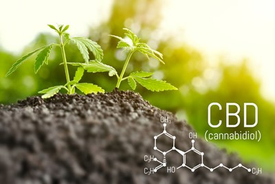 CBD Questions Answered