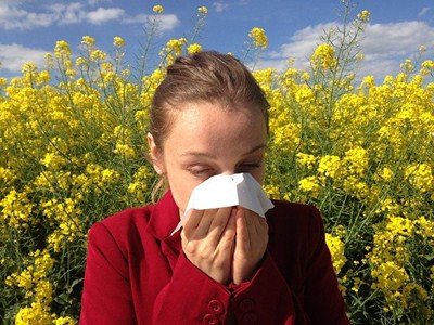 Natural Approaches to Seasonal Allergies - Woman blowing nose surrounded by pollen.